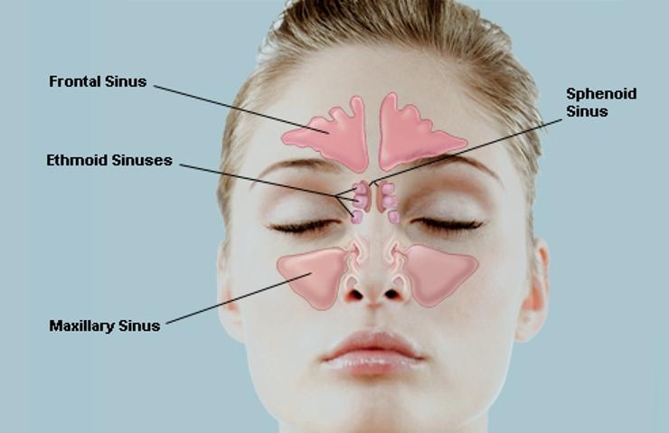 Poto posisi sinus